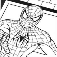 Раскраски с человеком пауком spider man